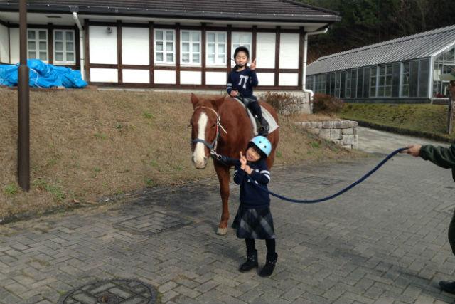 琵琶湖忍者国際ホーススクール