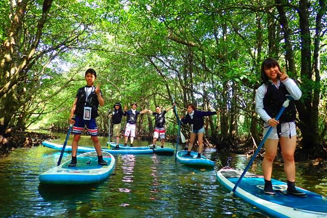 【沖縄・西表島・SUP】幸運の滝を目指せ!新定番マングローブSUPorカヌー体験ツアー!(半日/写真データ無料)