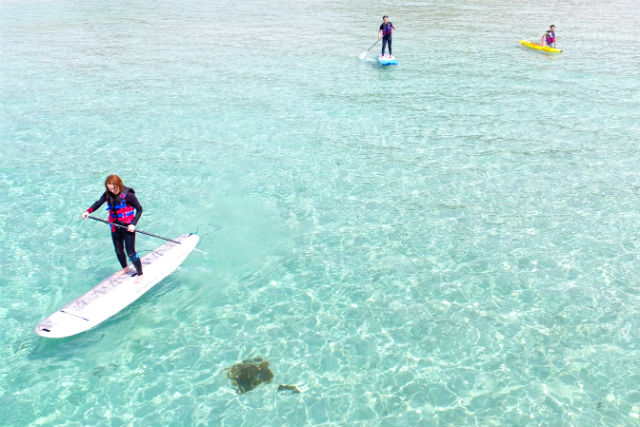【山口・角島】SUP&サーフィン体験(70分・ホテル西長門リゾ−ト発・ドローン撮影付)