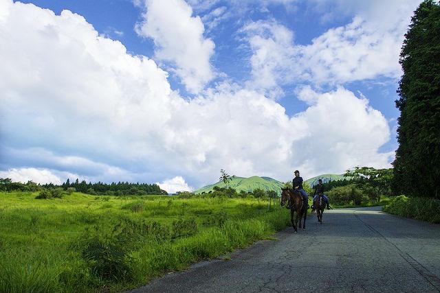 【熊本・阿蘇市・乗馬体験】阿蘇カルデラの景色を見に行こう!パノラマコース