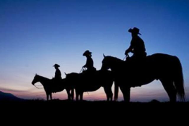 【熊本・阿蘇市・乗馬体験】星空の下をお散歩。スターライトトレッキング