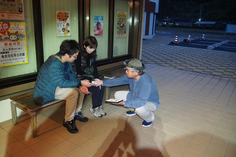 【ナイトウォッチングツアー・奄美大島】夜の動物たちを見逃すな!ここでしか感じられないありのままの大自然!希望者送迎付き!