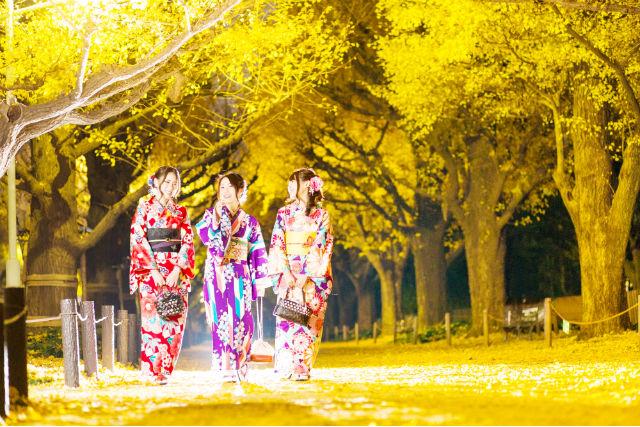 【福岡・博多・着物レンタル】博多駅直結!着物レンタル&着付けプラン