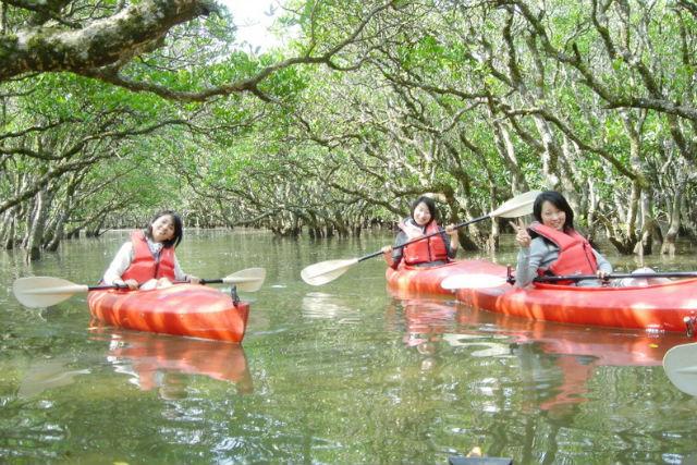 【奄美大島・カヌー】大自然がおもしろい!ど~んとこい奄美へ。 ガイド付きマングローブカヌー(1時間30分)