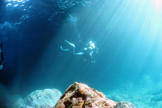 【熊本・天草・体験ダイビング】魚と遊ぶ!シュノーケリング&体験ダイビング(水中写真付き)
