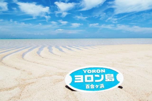 【鹿児島・与論島・グラスボート】グラスボートで行く百合ヶ浜上陸&LOOKウミガメツアー!可愛いウミガメを鑑賞できる!(無料送迎あり)