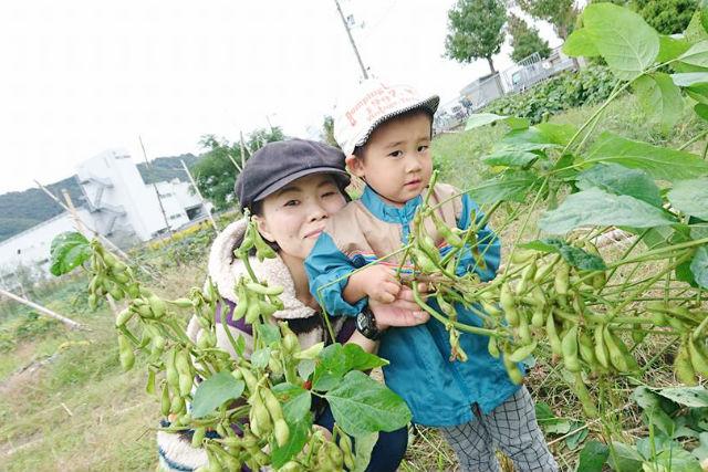 【大阪・農業体験】親子で学べる食育!無農薬野菜の収穫・調理体験