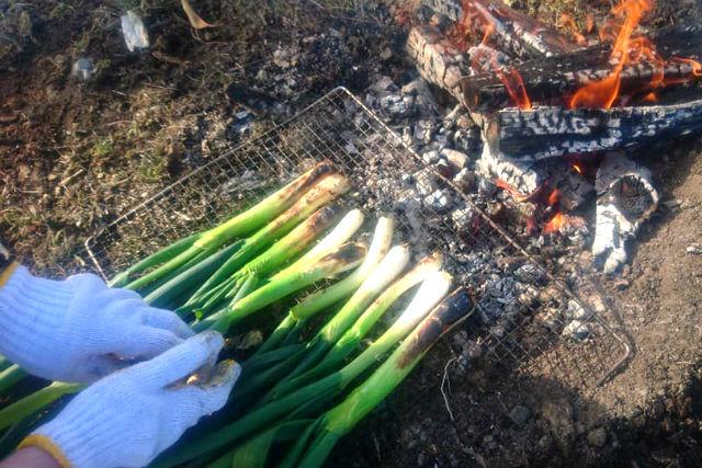 【大阪・池田・農業体験】野菜本来の味が楽しめる!自然豊かな畑で朝ごはんを食べよう(たき火付)