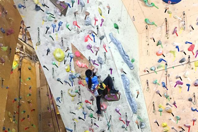 【青森県・三戸郡・クライミング】初めてでも楽に登れる!クライミング体験(2時間)