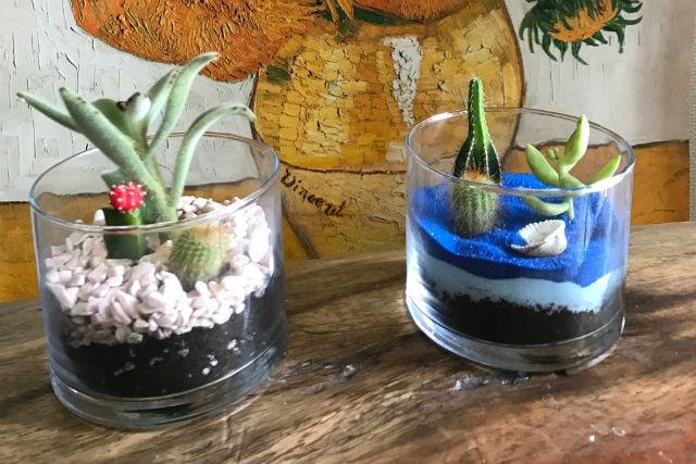 【愛知・名古屋・手作り雑貨】グラスの観葉植物をつくろう!グリーンインテリアにぴったり!