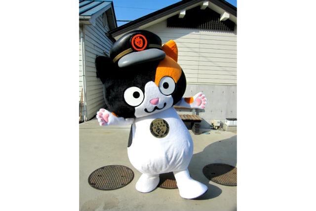 【和歌山・産業観光】人気者のたま駅長代理と記念撮影もできる!和歌山電鐵車両点検場見学