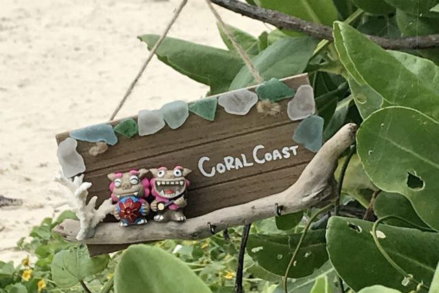 Coral Coast ヤギcafe