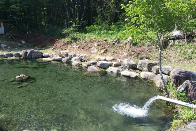 【岐阜・釣り】童心に帰ってのんびり釣り体験!池釣りコース