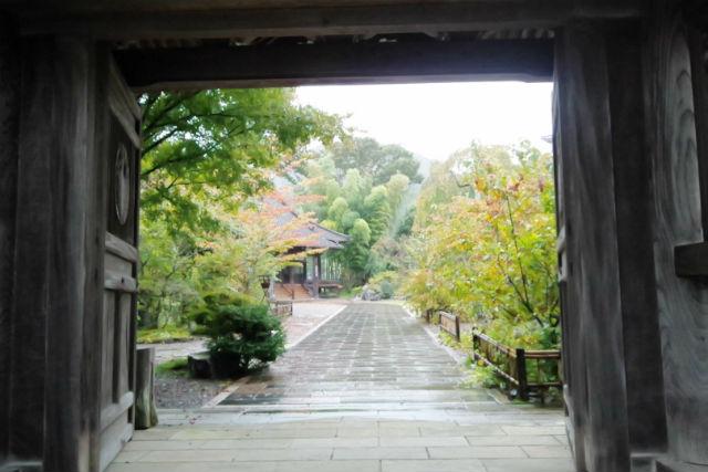 【宮崎・ハイキング】世界農業遺産認定の地域へ!フットパス宮の原コース