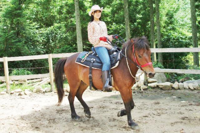 【佐賀・乗馬体験】どさんこ馬とふれあえる!手つかずの山里で乗馬体験