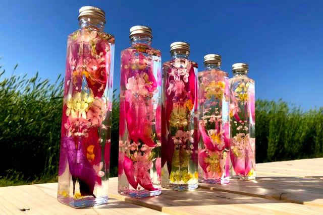 【島根・松江・ハーバリウム】鮮やかな色彩!日本一の「牡丹」を使ったハーバリウム作り