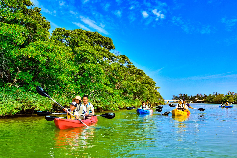 【沖縄・東海岸・マングローブカヤック】探検家気分で億首川のマングローブ林を進もう!ツアー中の写真付き