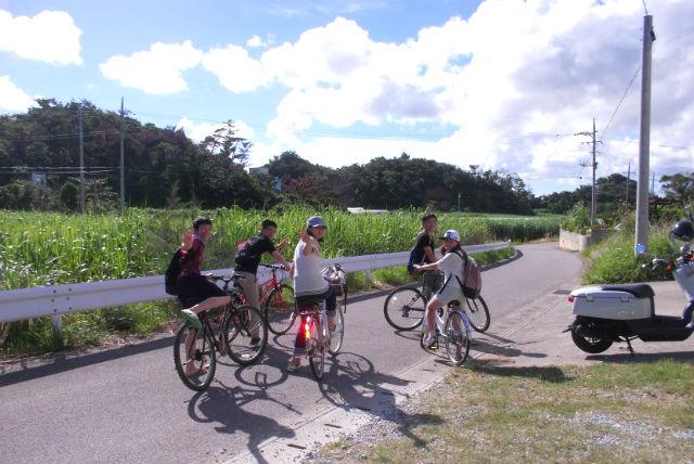 【沖縄・屋我地島・サイクリング】ゆったり島散歩!屋我地島サイクリングツアー