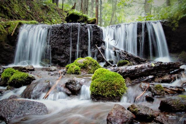 【2.5%還元】【北海道・阿寒湖・トレッキング】美しい森の源!阿寒の森の水巡り2時間30分【1名から予約可能】
