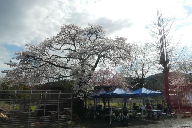 【栃木・塩谷・バーベキュー】木造校舎の校庭で塩谷の恵みを味わうバーベキュープラン