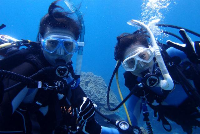 【和歌山・田辺・ダイビング】南紀白浜で沢山の魚と海中散歩しよう!ダイビング体験