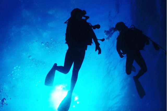 【沖縄・名護・ダイビング】認定ダイバーになって自由に海を泳ごう!ライセンス取得
