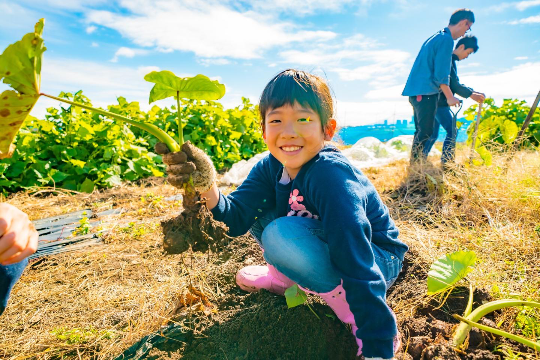 【農業体験・神奈川】相武台下駅徒歩5分!遊びの延長で楽しい食育・農業体験!家庭菜園レッスンも可!