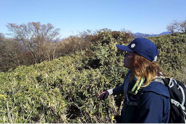 【山梨・鳴沢村・ハイキング】富士山周辺の自然に触れる。富士山麓ハイキングツアー