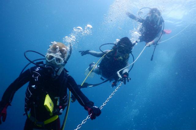 【島根・久手・体験ダイビング】透明度の高い海で美しい水中世界を満喫!体験ダイビング
