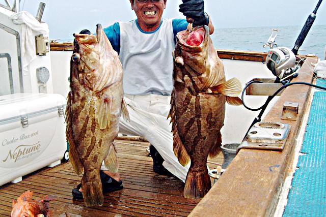 【和歌山・すさみ・海釣り】魚の引きを体感して大物をゲット!泳がせ釣り体験
