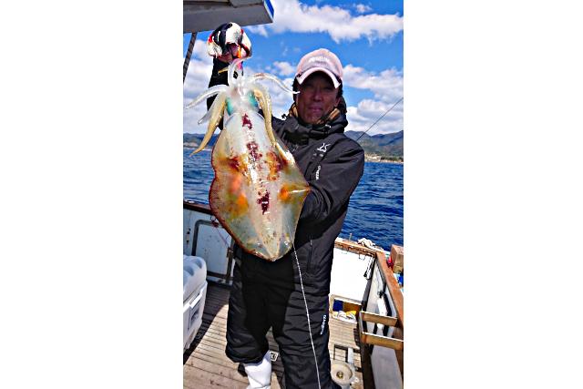 【和歌山・すさみ・イカ釣り】ファミリーにおすすめ!小さなお子様でも楽しめるイカ釣り