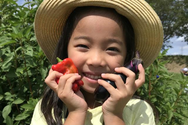 【千葉・木更津・収穫体験】小学生以下無料☆有機・無農薬栽培のお野菜や果実を贅沢に収穫!特選コース