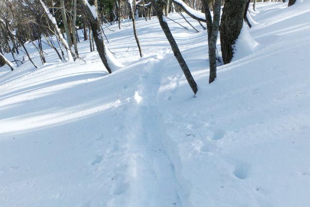 【滋賀・琵琶湖西岸・スノートレッキング】びわ湖バレイで雪景色を散策!スノートレック初心・初級編