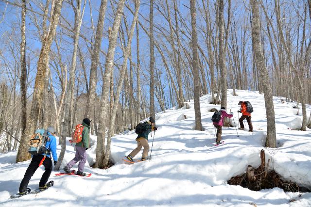 【岐阜・高山・スノーシュー】冬を満喫!雪上たき火とスノーシュートレッキング体験