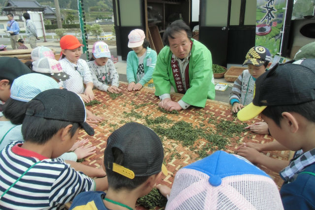 【2.5%還元】【佐賀・嬉野・茶摘み】全国有数のお茶の産地で伝統の釜炒り製法と茶葉の手揉みを体験【2名から予約可能】