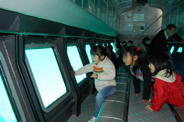 【徳島・竹ヶ島・遊覧船】海の中まで見えちゃう!観光船ブルーマリン号で遊覧しよう!