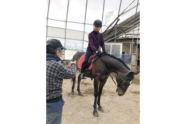 【北海道・白老郡・乗馬体験】馬と一緒に雄大な景色を楽しむ引馬体験(15分)