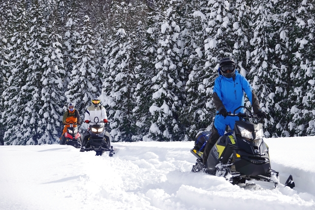 【新潟・湯沢・スノーモービル】自然の雪山を快走!最新マシンでスノーモービル体験1日コース