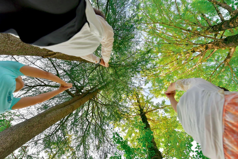 【新潟・三条・ヨガ教室】渓流沿いの自然に囲まれて宿泊とヨガを満喫!朝ヨガプラン