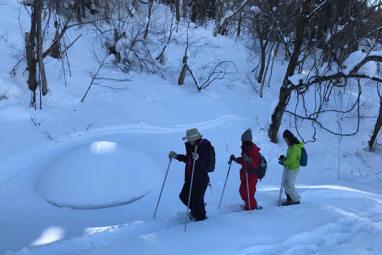 【2.5%還元】【長野・白馬・スキー】新感覚雪遊びのスキー体験!歩くスキーでスノーハイキング【2名から予約可能】