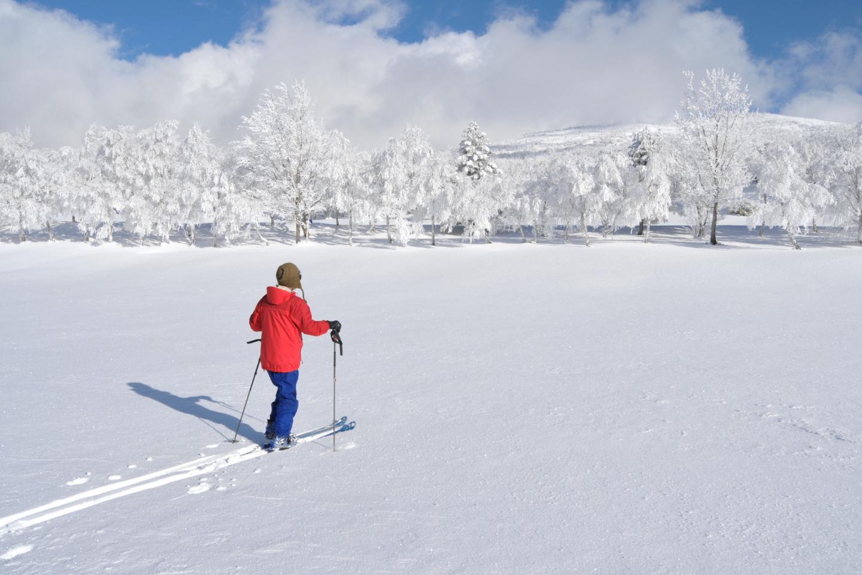 【長野・上田・テレマークスキー】美しい白銀の世界へご案内!根子岳山麓スノーハイク
