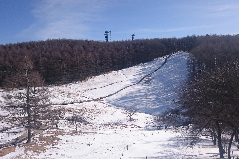 【2.5%還元】【長野・富士見・スノーシュー】雪山登頂入門プラン!入笠山登頂スノーシューハイク【2名から予約可能】