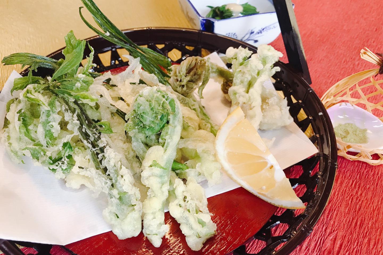 【新潟・南魚沼・農業体験】自然の恵みをまるかじり!山菜採り体験&ランチプラン