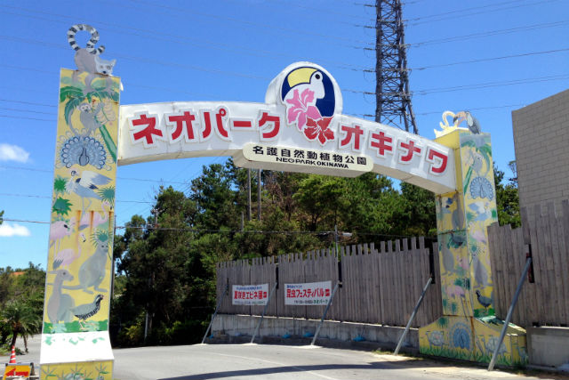 【10%割引】ネオパークオキナワ クーポン(入園料)
