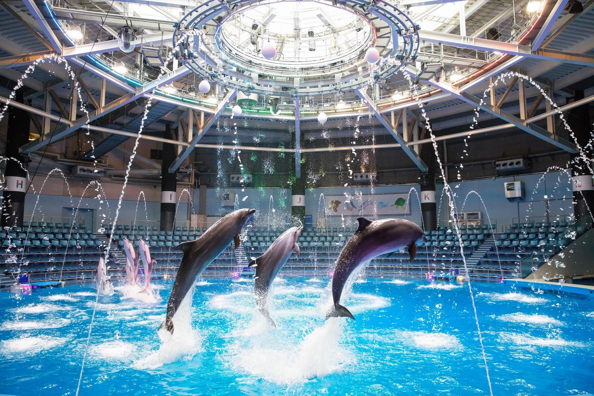 マクセル アクアパーク品川 水族館入場券 ※整理券必要日あり
