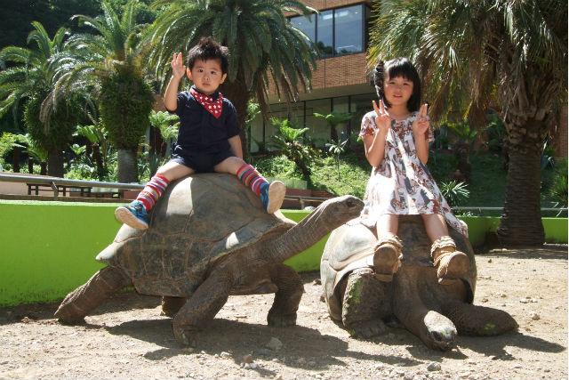 【最大200円割引】体感型動物園iZoo(イズー)入場クーポン