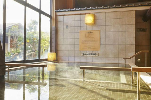 【土日祝・最大100円割引】古代蓮物語 入館クーポン