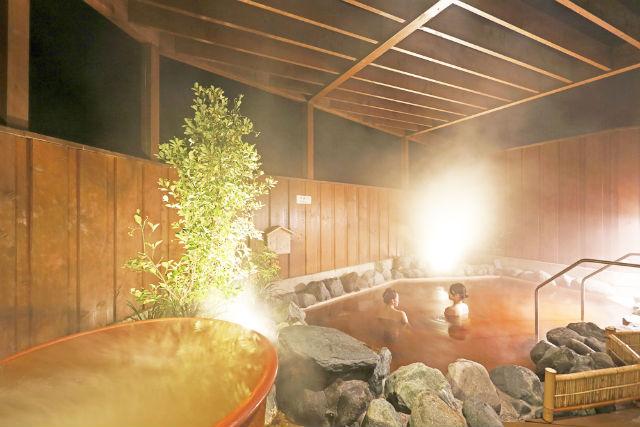 【47%割引】成田ビューホテル 日帰り入浴クーポン