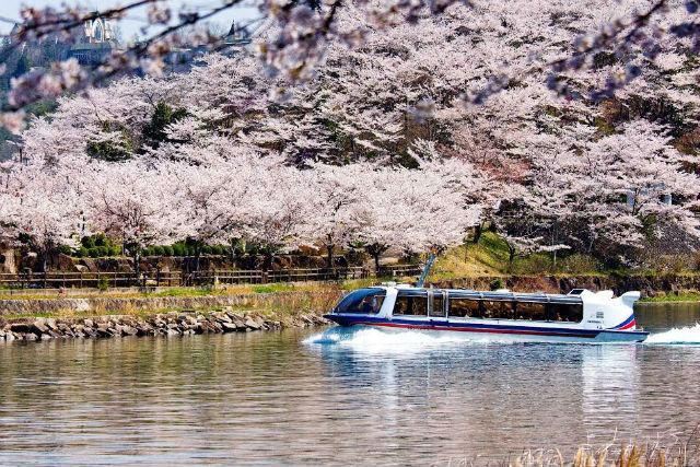【最大11%割引】恵那峡遊覧船 前売りクーポン