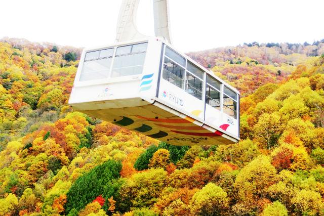 【100円割引】SORA terrace/竜王マウンテンパーク クーポン(ロープウェイ往復券)